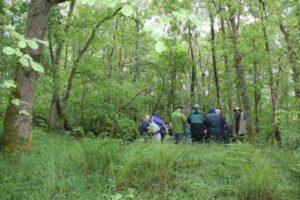 CVCWT woodland heritage seminar
